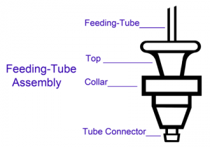 Feeding-Tube Assembly
